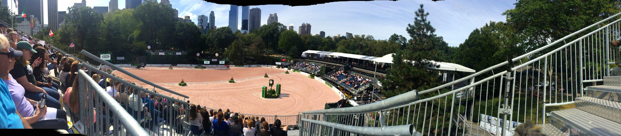 Central Park 2015!