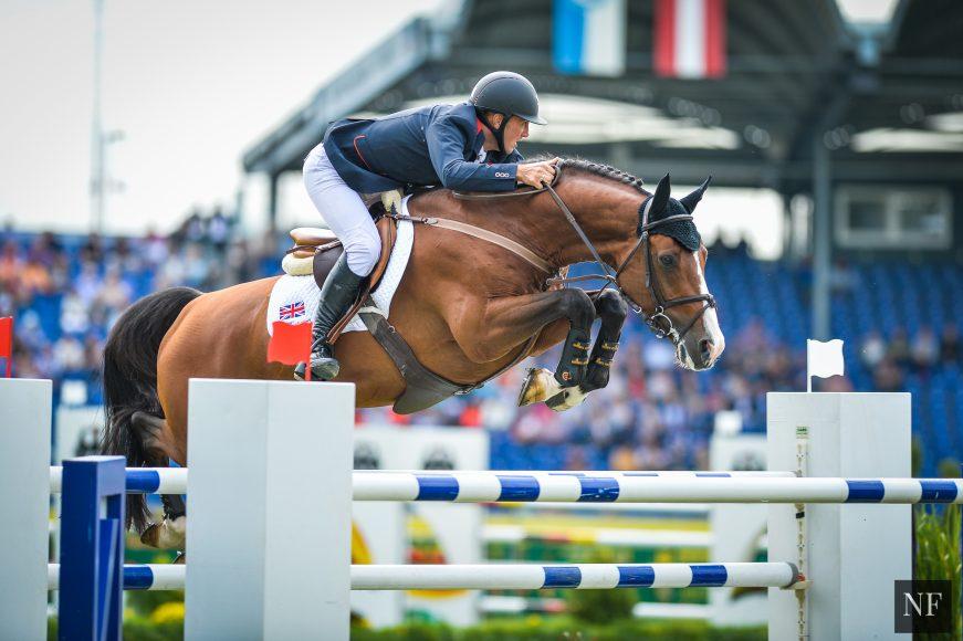 Utamaro d'Ecaussines, named Horse of the Year in Belgium by Agricultural Life.  - NOELLE FLOYD
