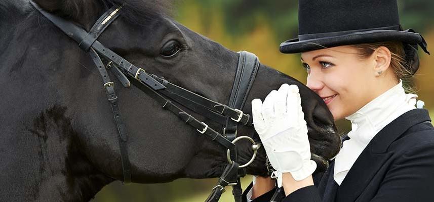 dressage-jacksonville-equestrian-center-florida-horse-show-857x400
