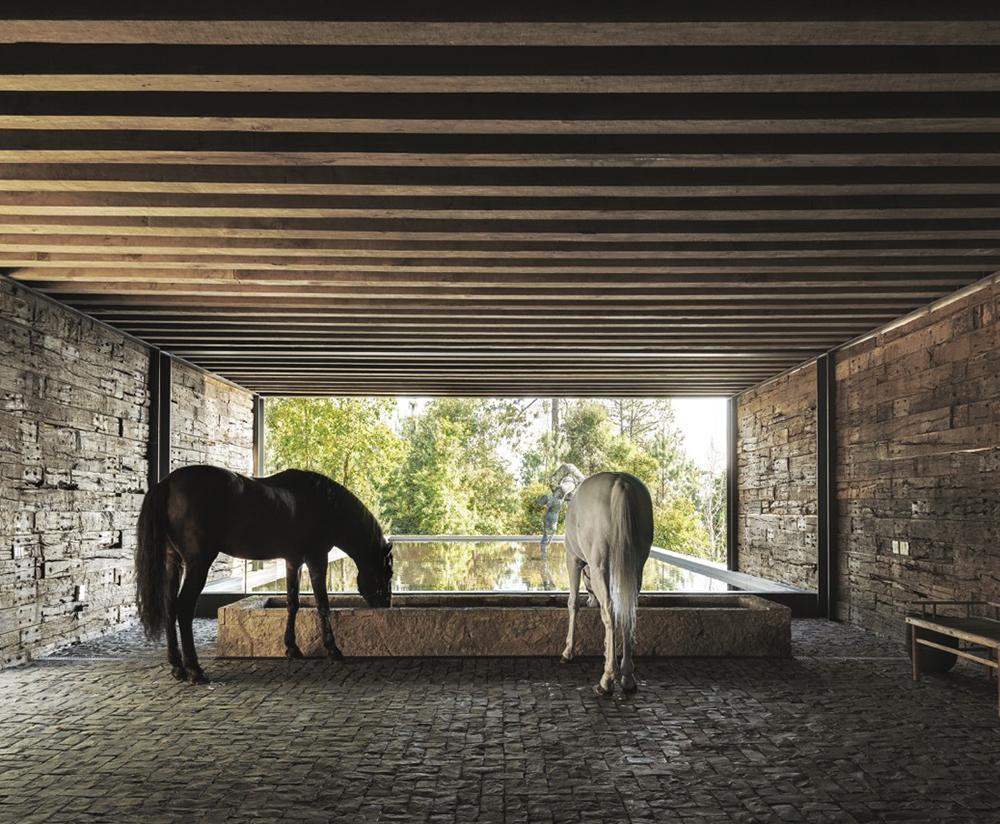 El-Mirador-House-CC-Arquitectos-Modern-Design-Horse-3