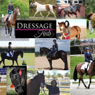 MEDIA:  Meet Dressage Hub